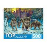 ПазлыTOPpuzzle 500 дет. Волки и снежный замок ХТП500-4219, (Рыжий кот)