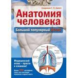МедицинскаяЭнциклопедия Билич Г. Анатомия человека. Большой популярный атлас, (Эксмо, 2016), 7Б, c.144