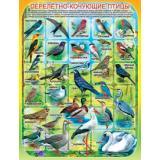 1ПЛ381 Плакат