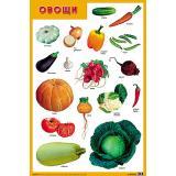 НаглядныеПособия Плакат. Овощи (А1), (Мозаика-Синтез, 2020), Л